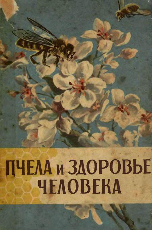 Пчела и здоровье человека - Виноградова Зайцев