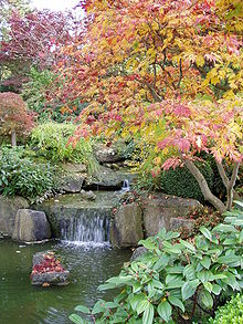 Садово-парковые композиции - Автор неизвестен