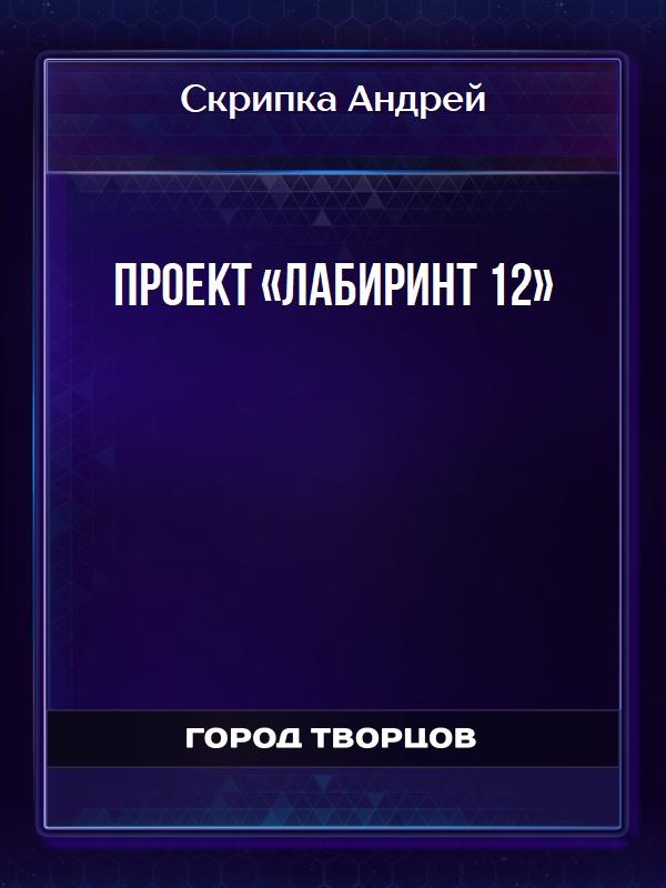 Проект «Лабиринт 12» - Скрипка Андрей