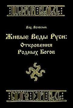 Родные Боги Руси - Волхв Велеслав